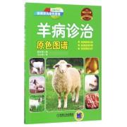 羊病诊治原色图谱(疾病诊治原色图谱)