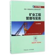 矿业工程管理与实务(2017年版1G400000)/全国一级建造师执业资格考试用书