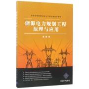 能源电力规划工程原理与应用(高等院校能源与电力工程应用技术教材)