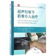 超声引导下肌骨介入治疗(中文翻译版)(精)