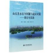 山东省水安全问题与适应对策--理论与实践