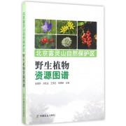 北京雾灵山自然保护区野生植物资源图谱