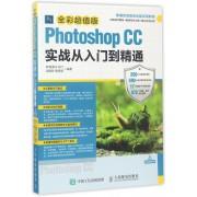 Photoshop CC实战从入门到精通(全彩超值版新编实战型全功能实用教程)